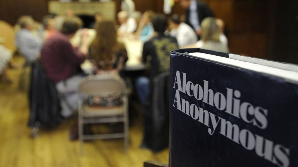 Why are support groups like Alcoholic Anonymous (AA) important at Edna's sober homes and halfway houses?